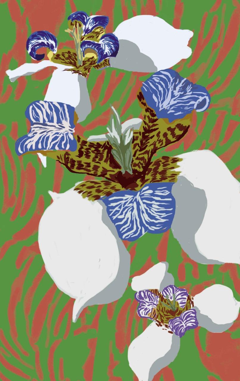 Exposição Flores do Brasil
